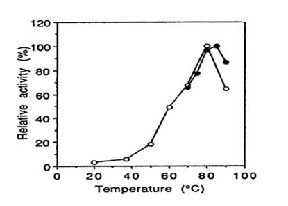 Bglu110 Beta-Glucanase activity vs. temperature