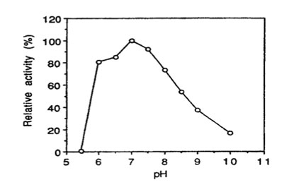 Bglu110 Beta-Glucanase activity vs. pH