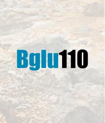 bglu110