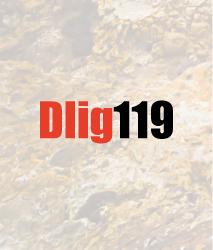 dlig119