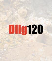 dlig120