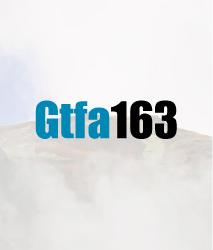 Product Gtfa163
